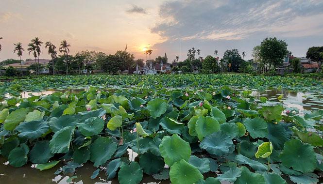Tiếp tục nắng nóng, chỉ số tia tử ngoại tại Hà Nội đạt ngưỡng nguy hiểm - Ảnh 1.