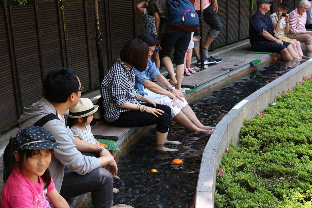 Đến Nhật Bản khách du lịch không nên bỏ qua địa điểm này  - Ảnh 3.