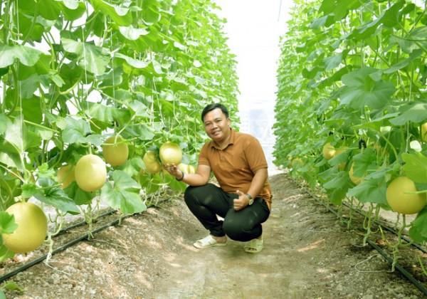 Chàng thanh niên 9X tại Cà Mau kiếm 2 tỷ mỗi năm nhờ mô hình nông nghiệp sạch - Ảnh 1.