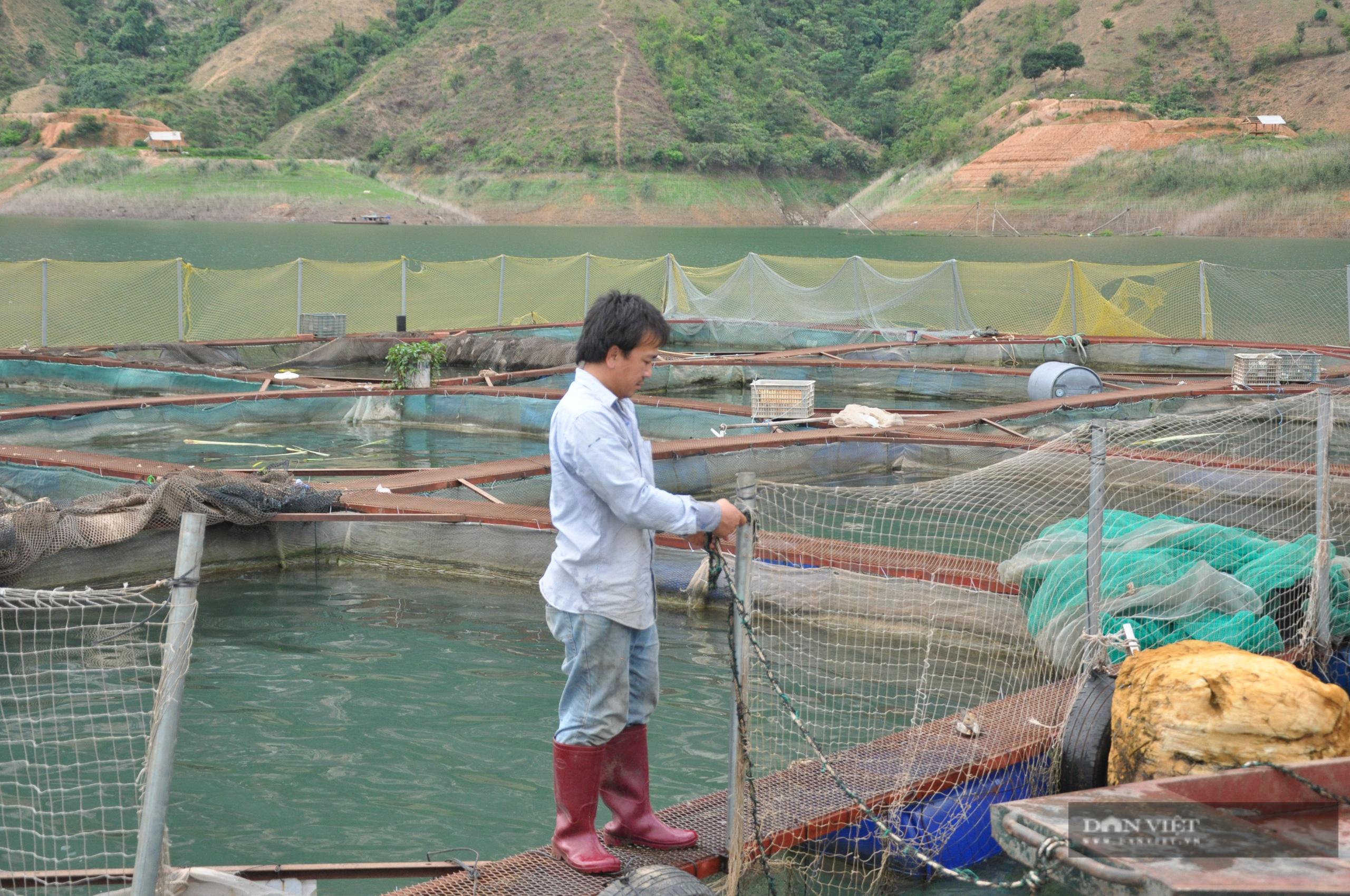 Ảnh hưởng Covid - 19, trăm tấn cá đặc sản ế ẩm, người dân Sơn La thiệt đơn, thiệt kép - Ảnh 4.