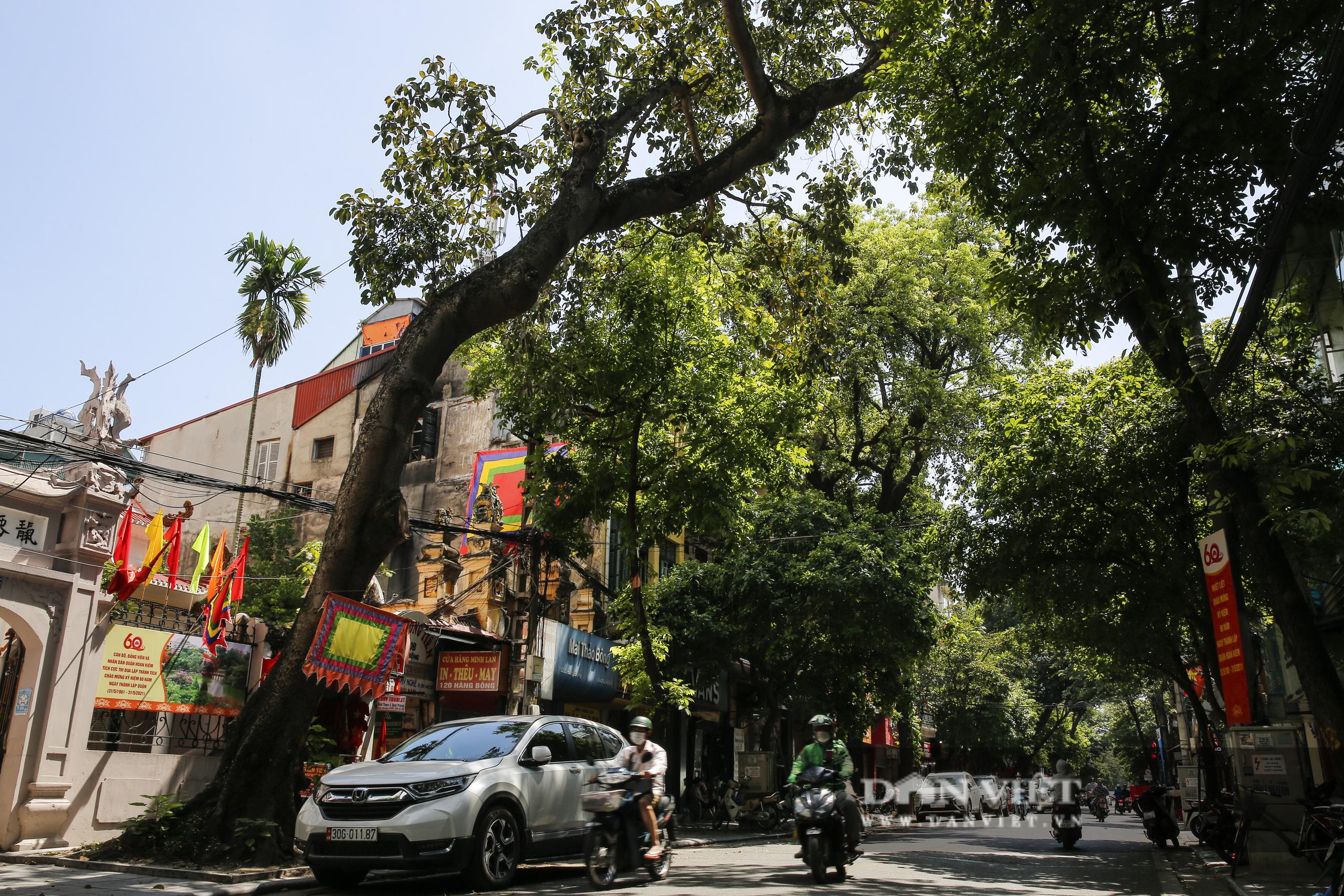 Hà Nội: Kỳ lạ con phố cổ dài 1 Km nhưng có 6 tên gọi khác nhau - Ảnh 4.