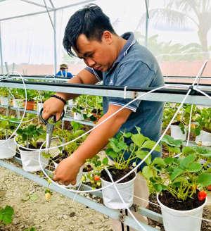 Chàng thanh niên 9X tại Cà Mau kiếm 2 tỷ mỗi năm nhờ mô hình nông nghiệp sạch - Ảnh 2.