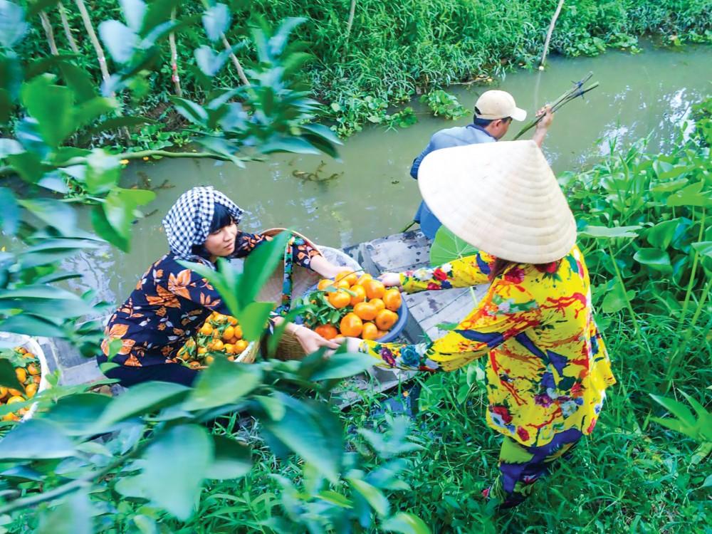 Kết hợp giữa nông nghiệp - du lịch: Cơ hội để lợi cả đôi đường? - Ảnh 2.