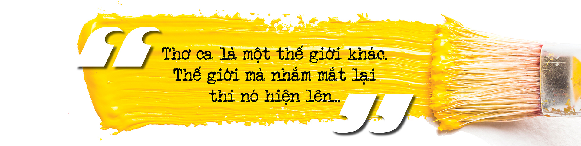 Nhà văn Nguyễn Quang Thiều: Sự đập cánh của đôi cánh tự do khác đôi chân của kẻ tuỳ tiện - Ảnh 14.
