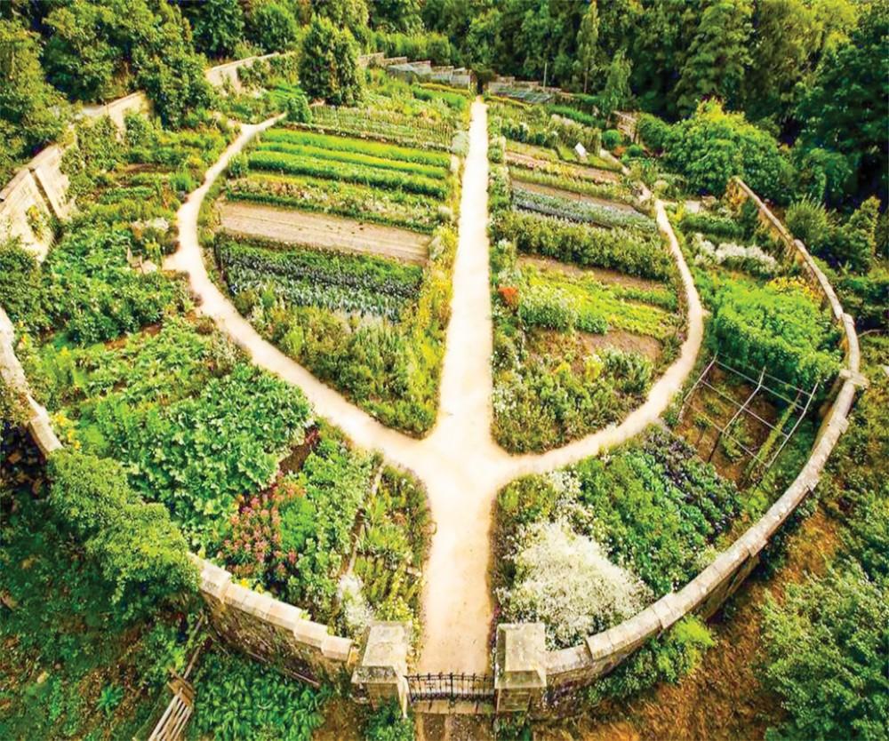 Kết hợp giữa nông nghiệp - du lịch: Cơ hội để lợi cả đôi đường? - Ảnh 1.