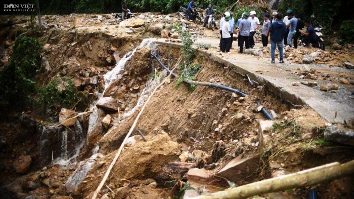 Bình Định chuyển hơn 25ha rừng tự nhiên... vì dự án thủy điện - Ảnh 2.