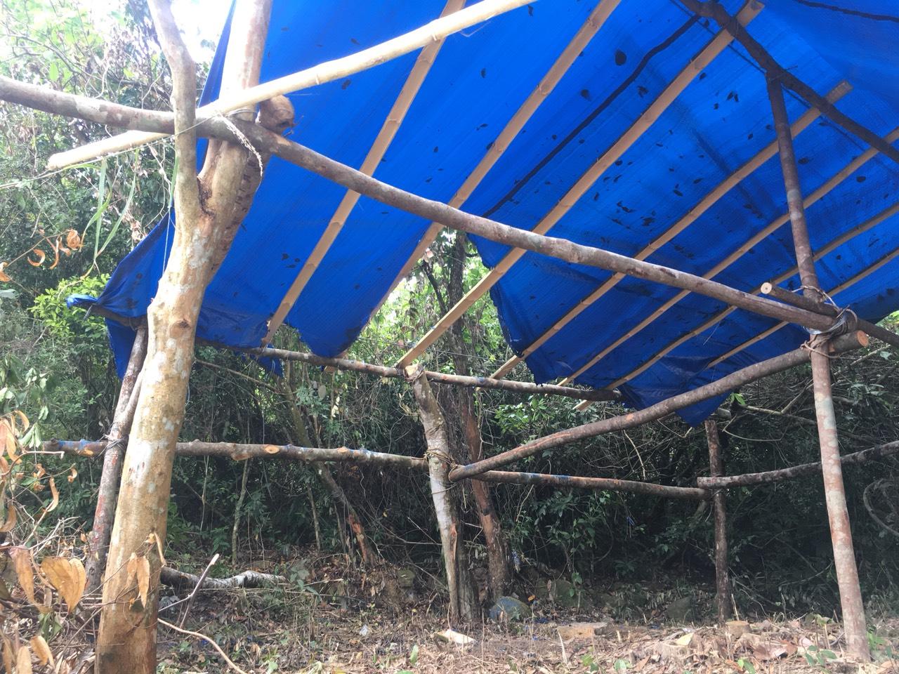 Bình Định: Cán bộ bất ngờ bị đánh, lán trại bảo vệ rừng cũng bị đốt cháy - Ảnh 2.