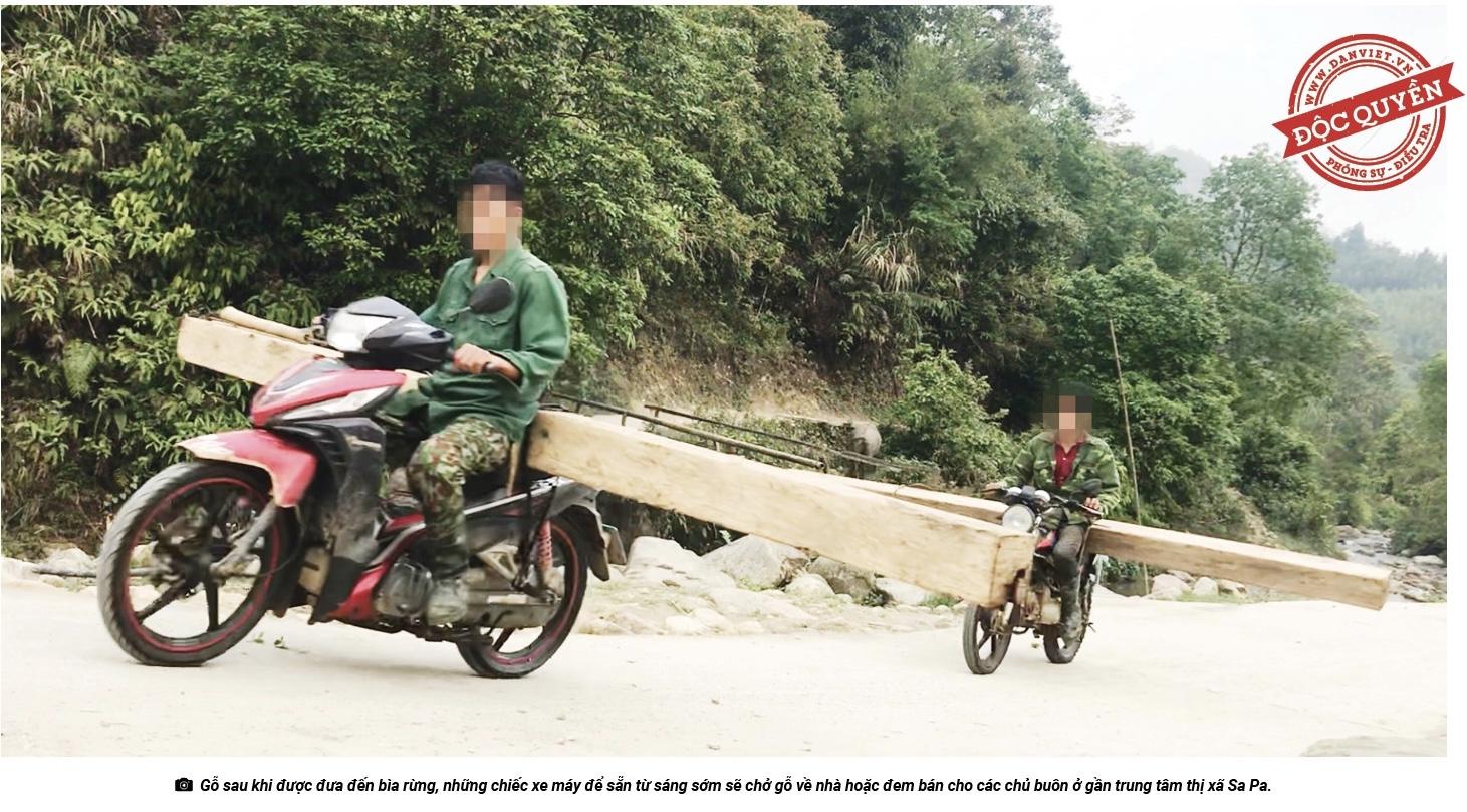 """Thế này là """"khai thác nhỏ lẻ"""" ư - thưa ông Chủ tịch UBND tỉnh Lào Cai! - Ảnh 17."""