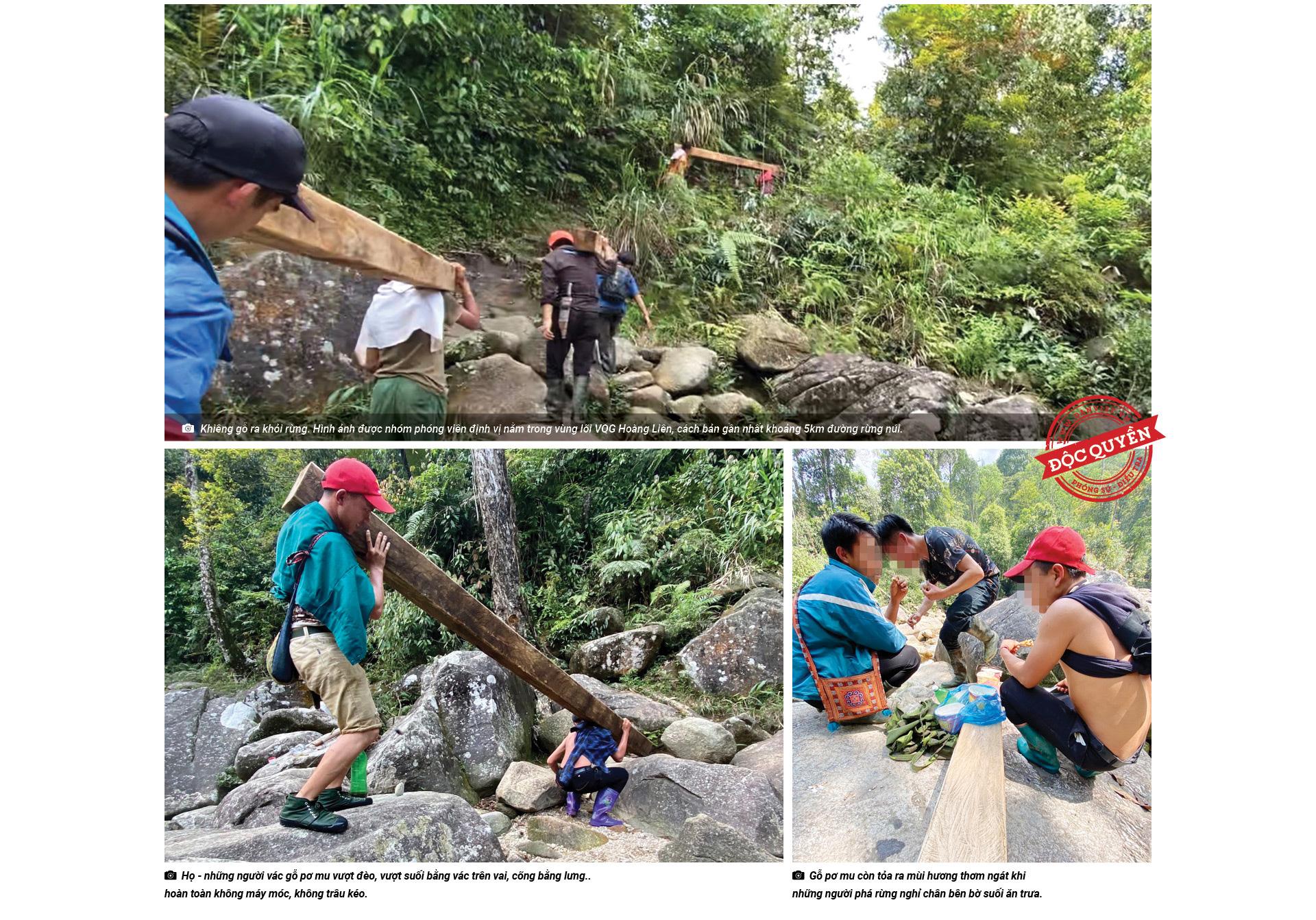 """Thế này là """"khai thác nhỏ lẻ"""" ư - thưa ông Chủ tịch UBND tỉnh Lào Cai! - Ảnh 3."""