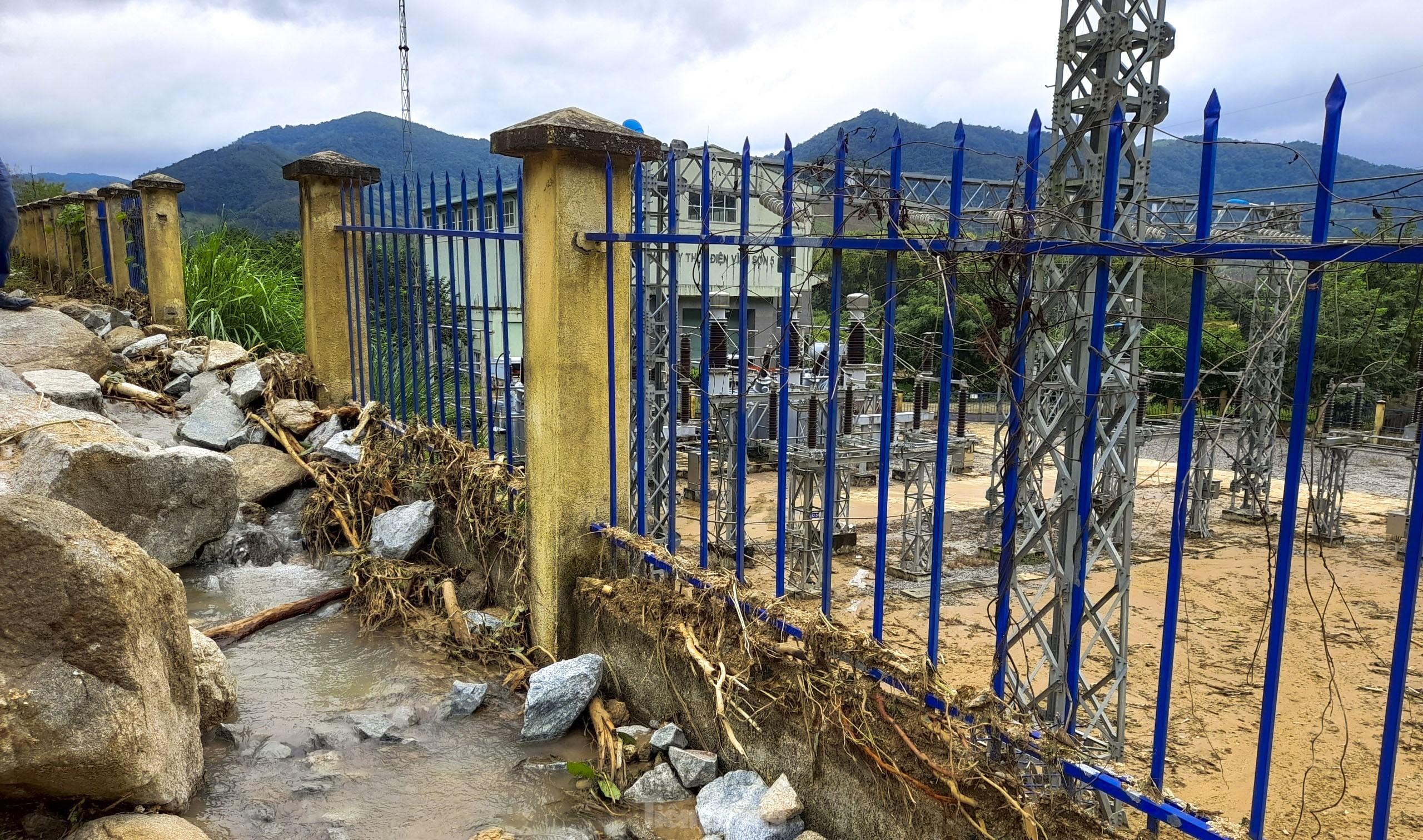 Bình Định chuyển hơn 25ha rừng tự nhiên... vì dự án thủy điện - Ảnh 1.