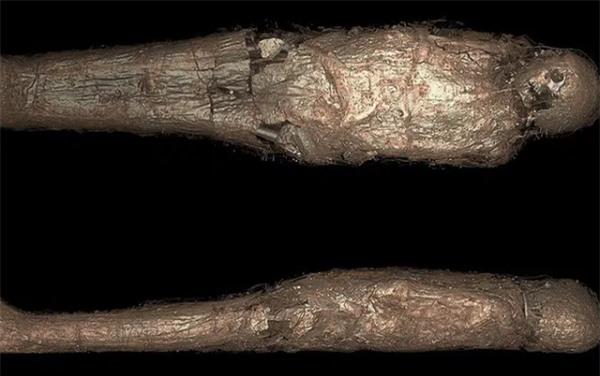 Bí ẩn rùng rợn về 'kén xác ướp' trong quan tài Ai Cập hơn 3.000 năm tuổi - Ảnh 1.