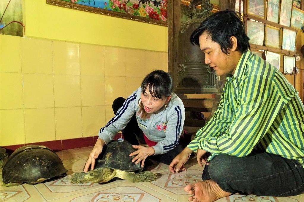 """Cực lạ Đồng Tháp: Những """"cụ"""" rùa trăm tuổi trong ngôi chùa cổ thích nghe kinh, ăn chay đặc biệt cực kì thích rau muống - Ảnh 2."""