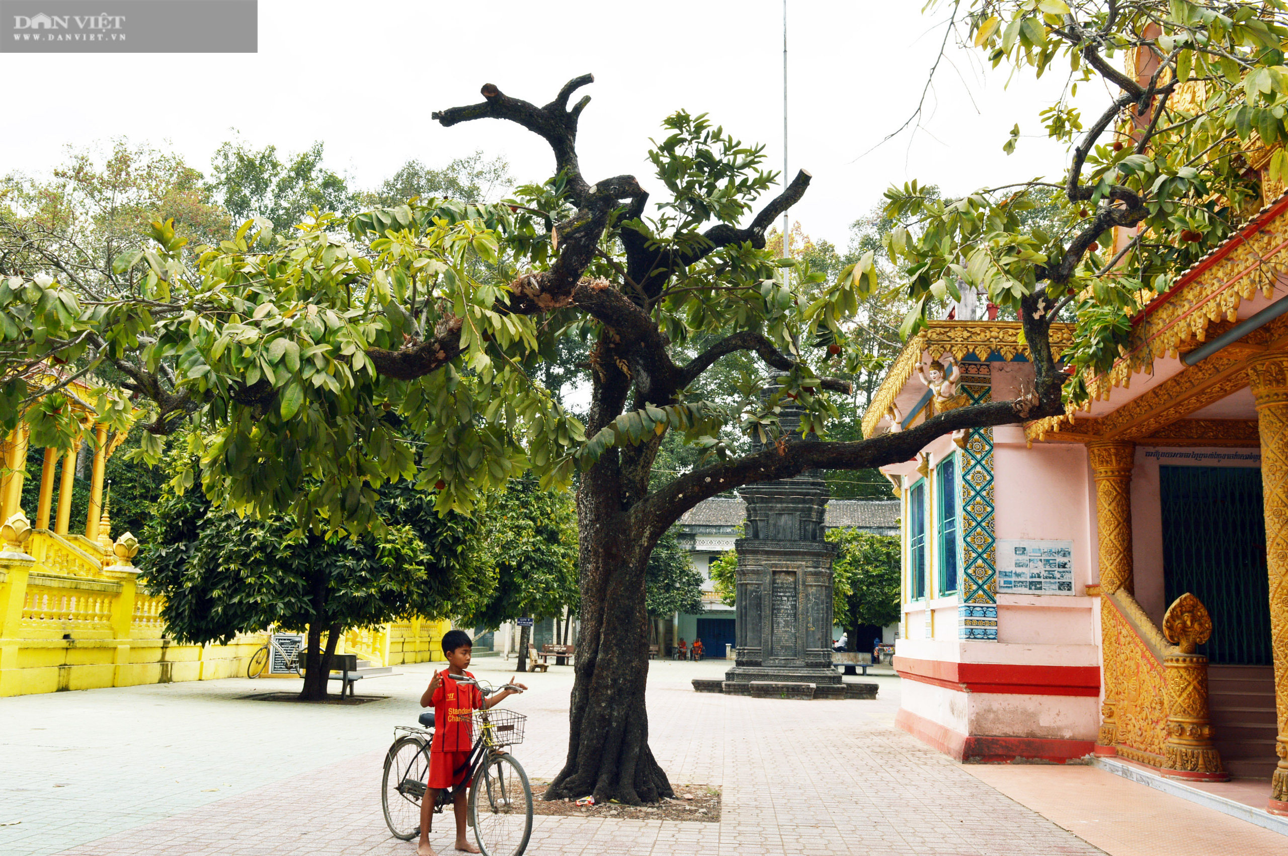 Sóc Trăng: Huyền bí ngôi chùa Khmer hơn 500 tuổi  - Ảnh 6.