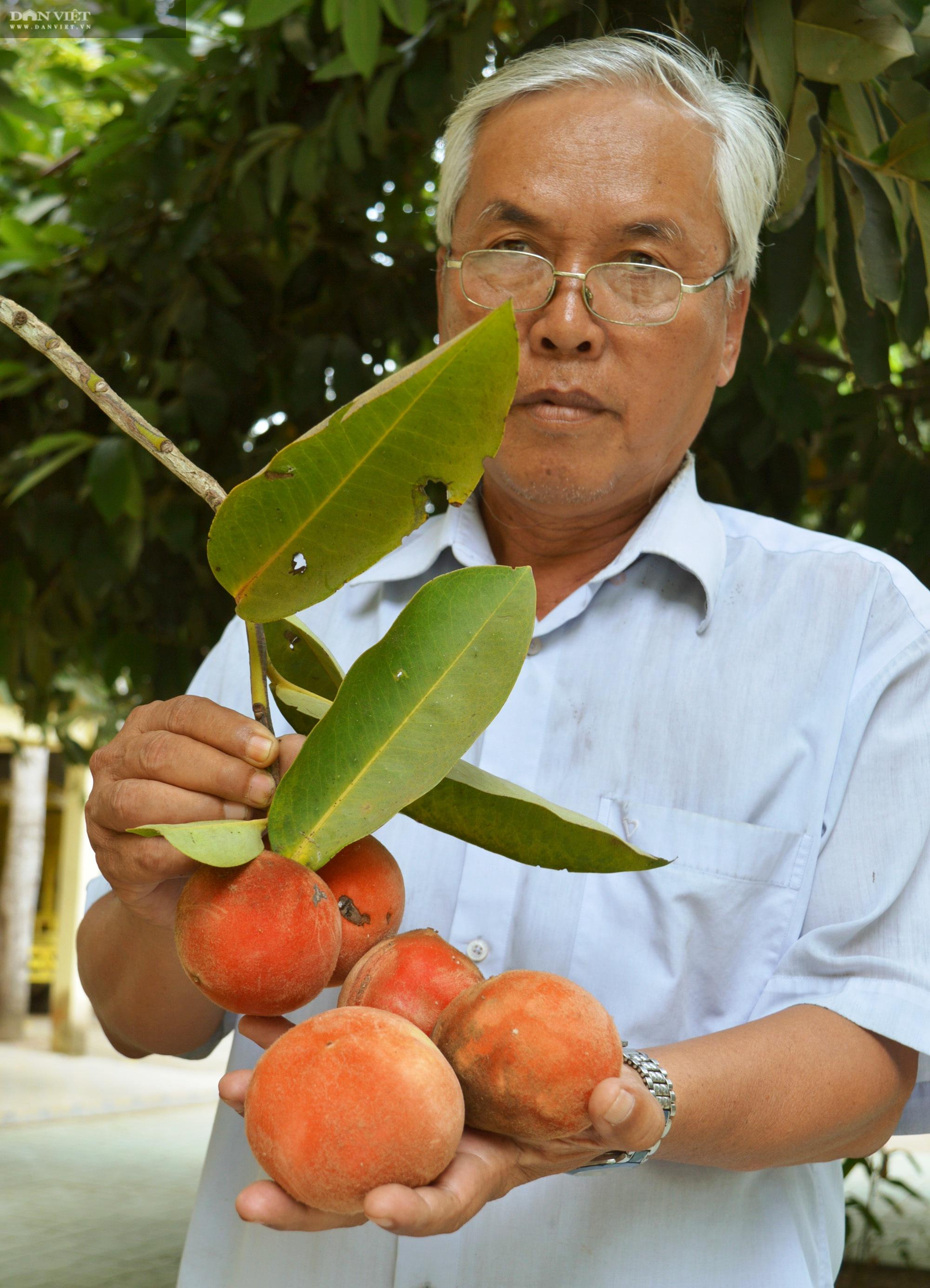 Sóc Trăng: Huyền bí ngôi chùa Khmer hơn 500 tuổi  - Ảnh 8.