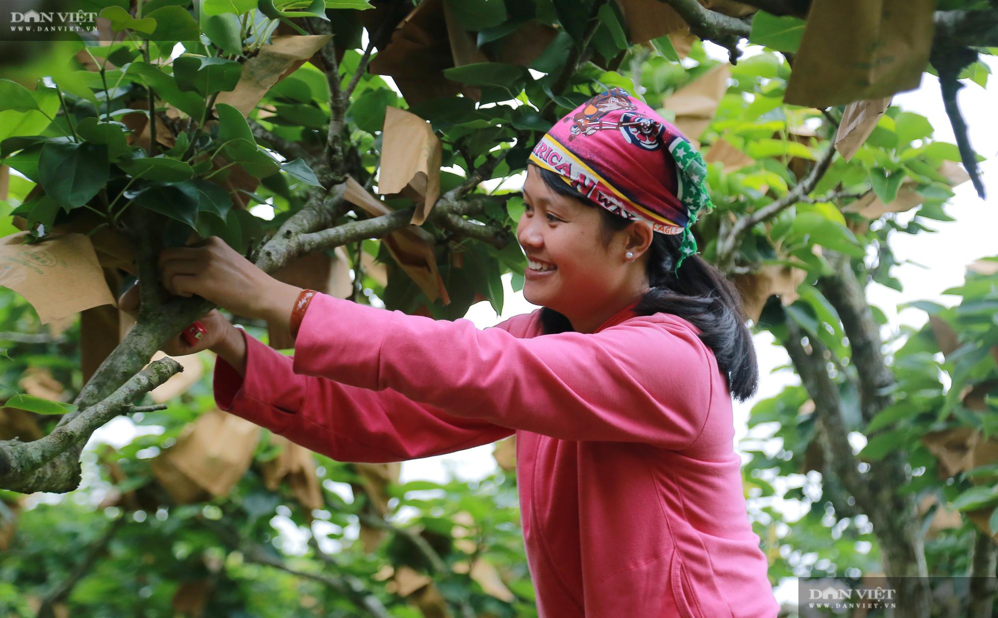 Chủ tịch Hội Nông dân Việt Nam thăm trại nghiên cứu cây ăn quả đặc sản ở biên giới - Ảnh 5.