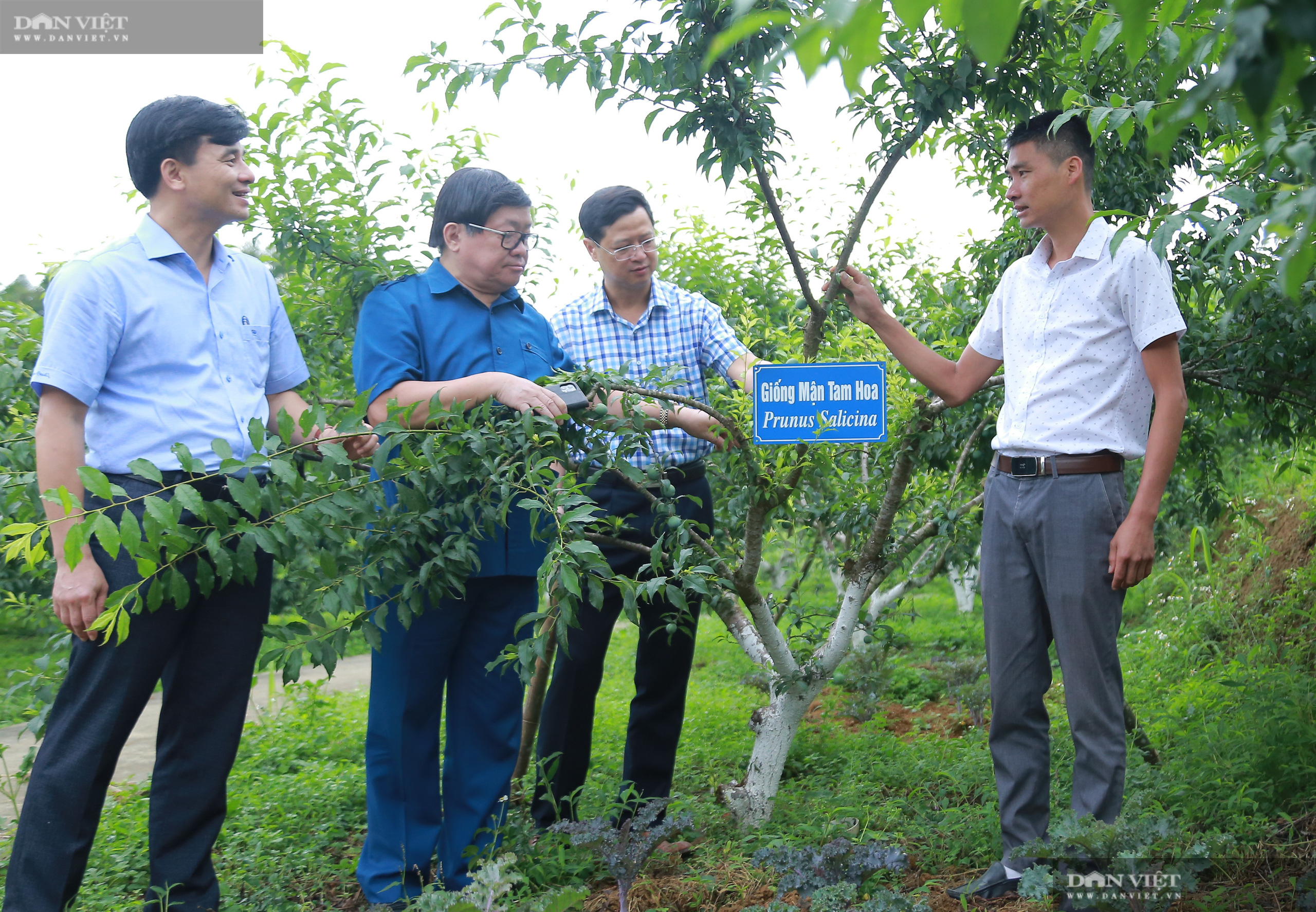 Chủ tịch Hội Nông dân Việt Nam thăm trại nghiên cứu cây ăn quả đặc sản ở biên giới - Ảnh 6.