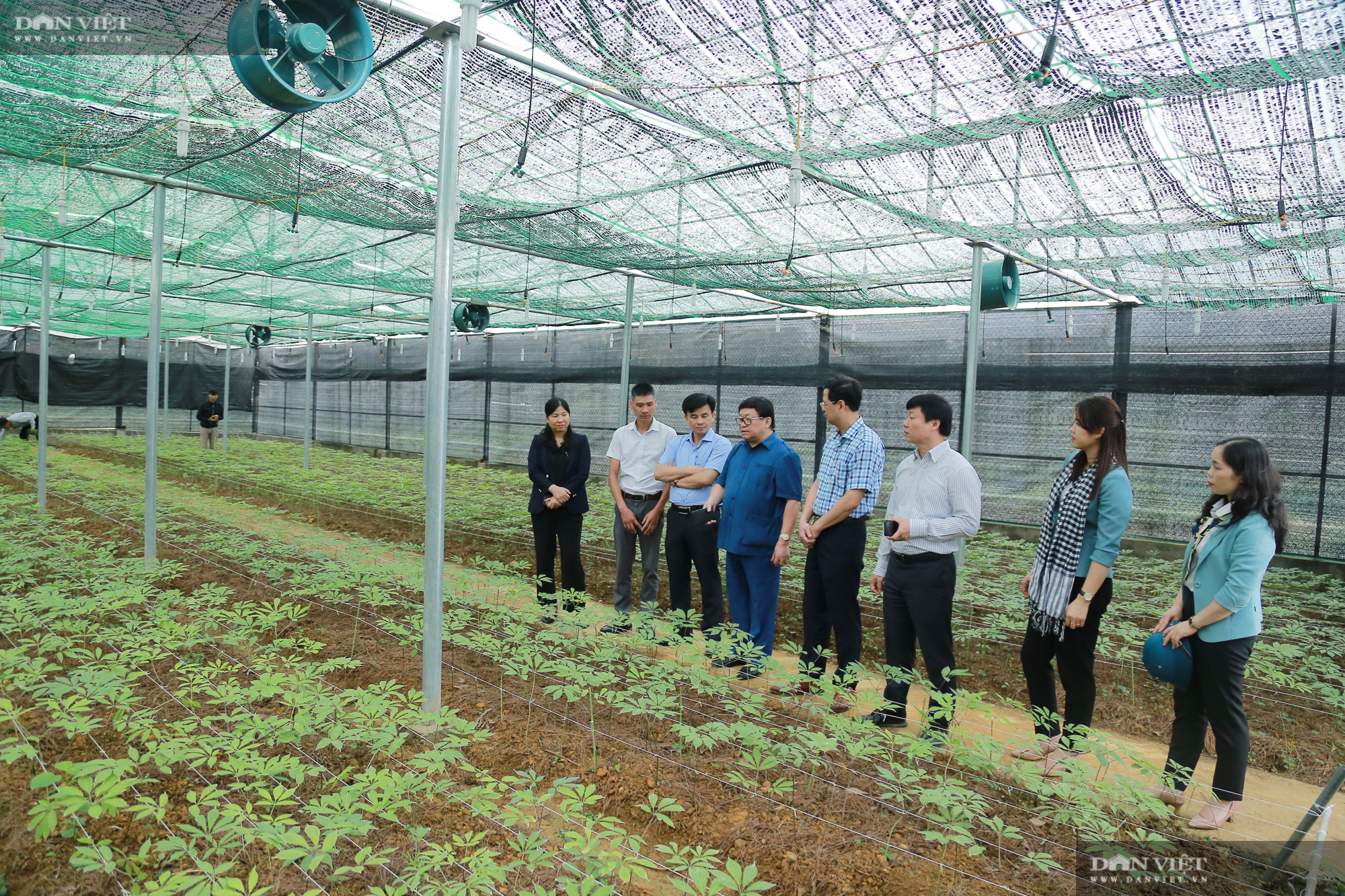 Chủ tịch Hội Nông dân Việt Nam thăm trại nghiên cứu cây ăn quả đặc sản ở biên giới - Ảnh 10.