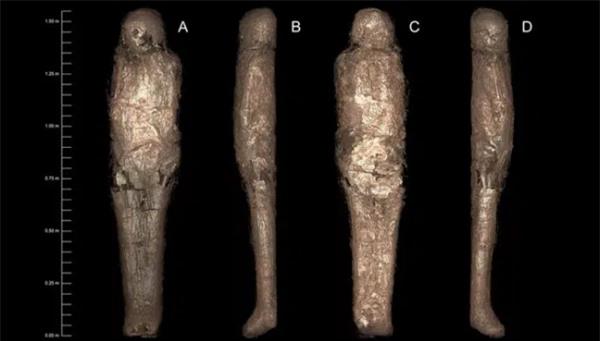 Bí ẩn rùng rợn về 'kén xác ướp' trong quan tài Ai Cập hơn 3.000 năm tuổi - Ảnh 2.