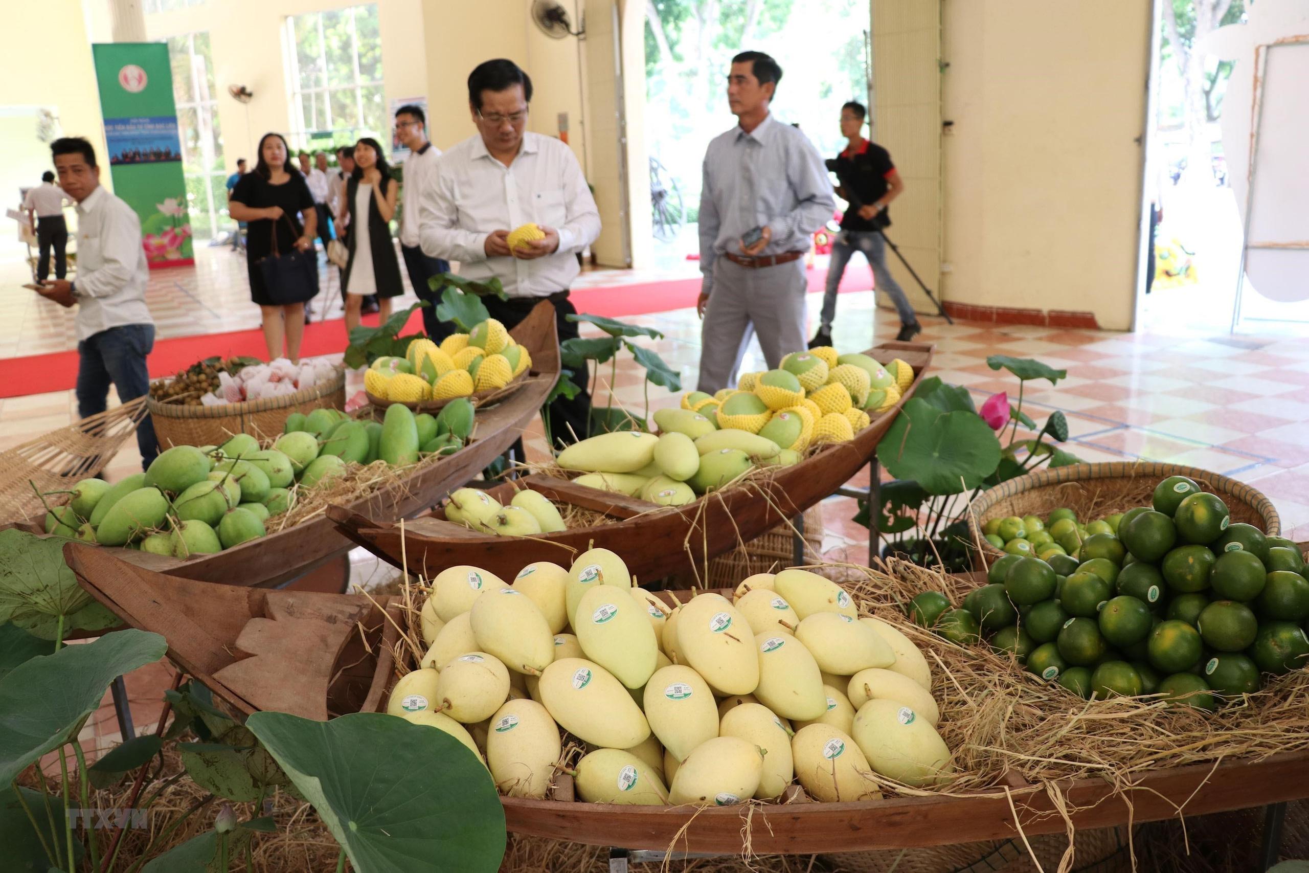 Loại quả trồng nhiều nhất ở Đồng Tháp nay phải cạnh tranh với sản phẩm của Campuchia trên đất Trung Quốc - Ảnh 1.