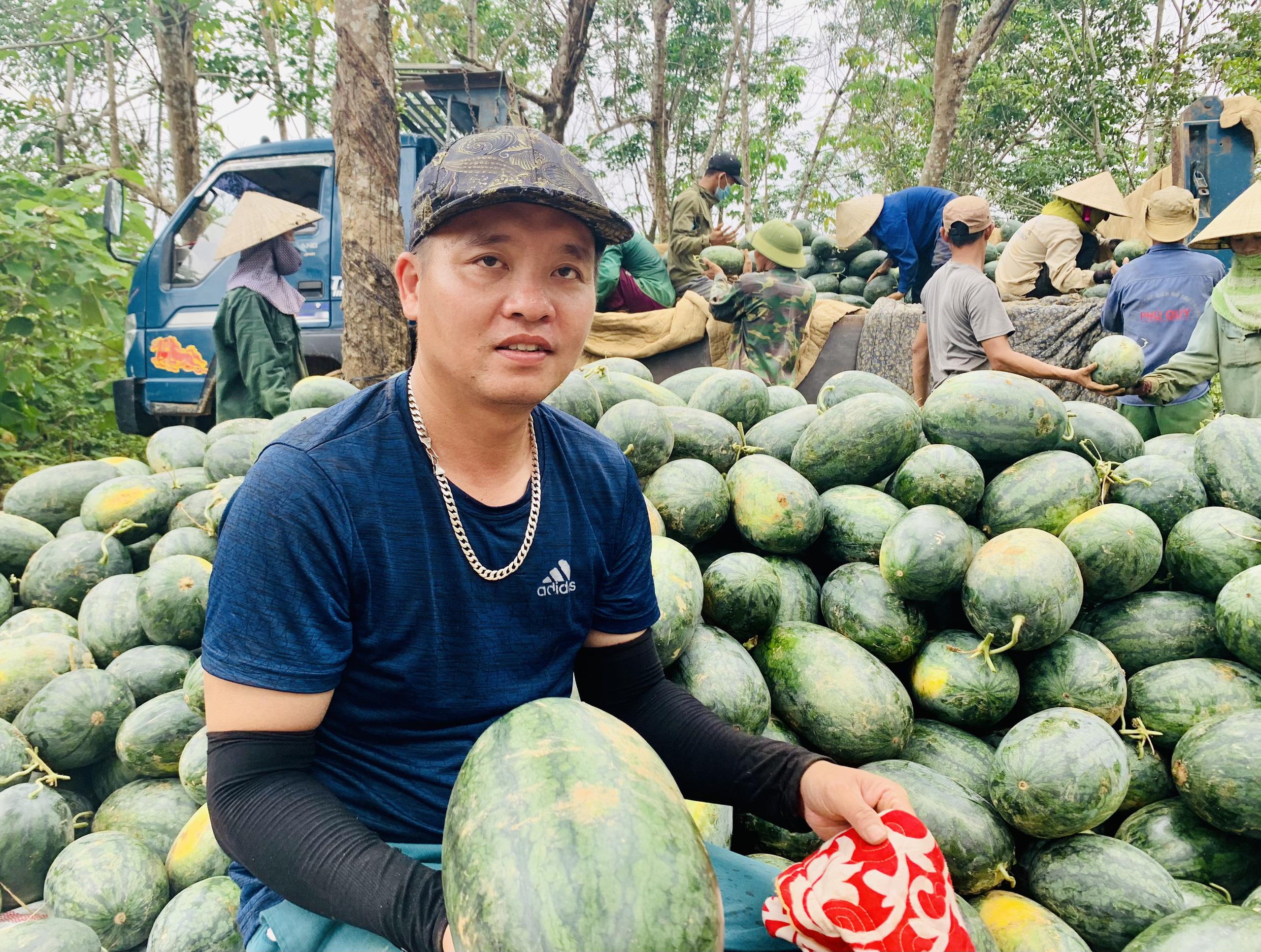 Quảng Bình: Dưa hấu cho quả to, nông dân đánh xe ô tô ra đồng thu hái - Ảnh 5.