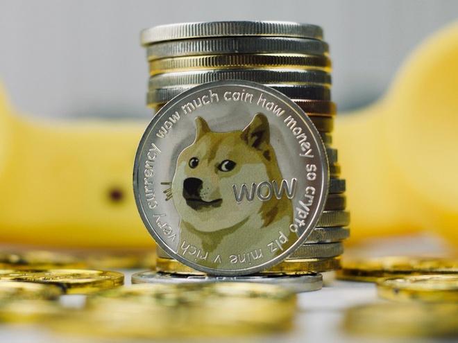 Dogecoin tăng giá 25.000% trong 6 tháng qua: một hiện tượng không thể tin được - Ảnh 1.