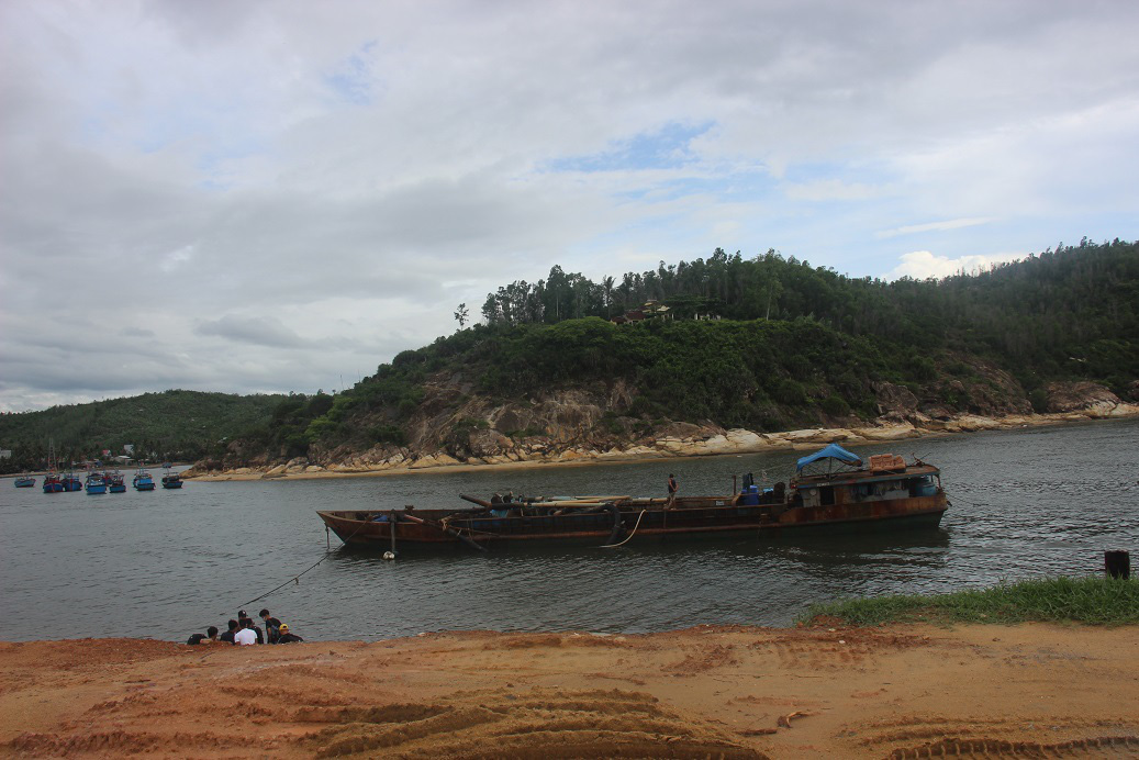 Bình Định bất ngờ muốn dừng tham gia dự án Cảng cá Tam Quan có vốn 540 tỷ đồng - Ảnh 2.