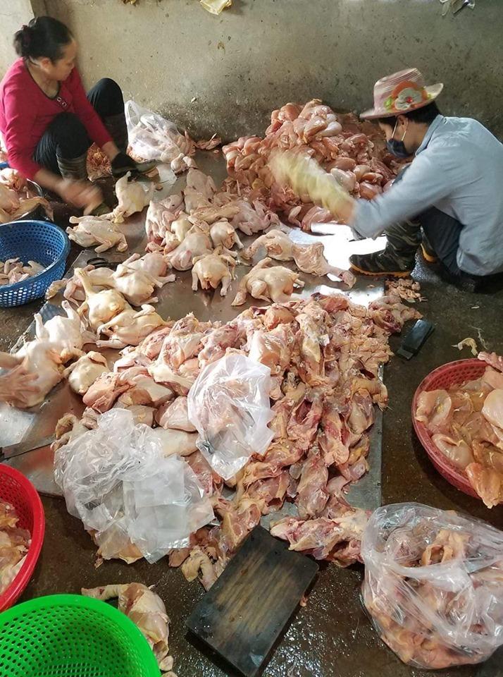 Giá gia cầm hôm nay 9/5: Giá vịt thịt miền Nam cao nhất cả nước, gà công nghiệp bán chậm - Ảnh 2.