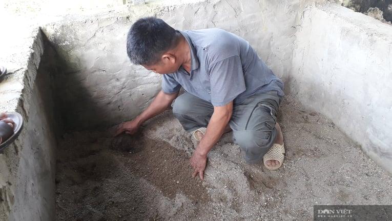 Thái Nguyên: Nuôi con chỉ ăn hè, ngủ đông vài năm mới thu hoạch ông nông dân đổi đời mua ô tô - Ảnh 4.