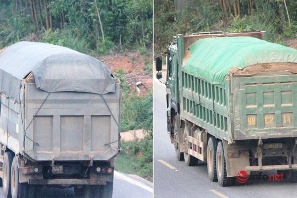 Vì lợi nhuận xe quá tải tái diễn tại nhiều tuyến quốc lộ - Ảnh 1.