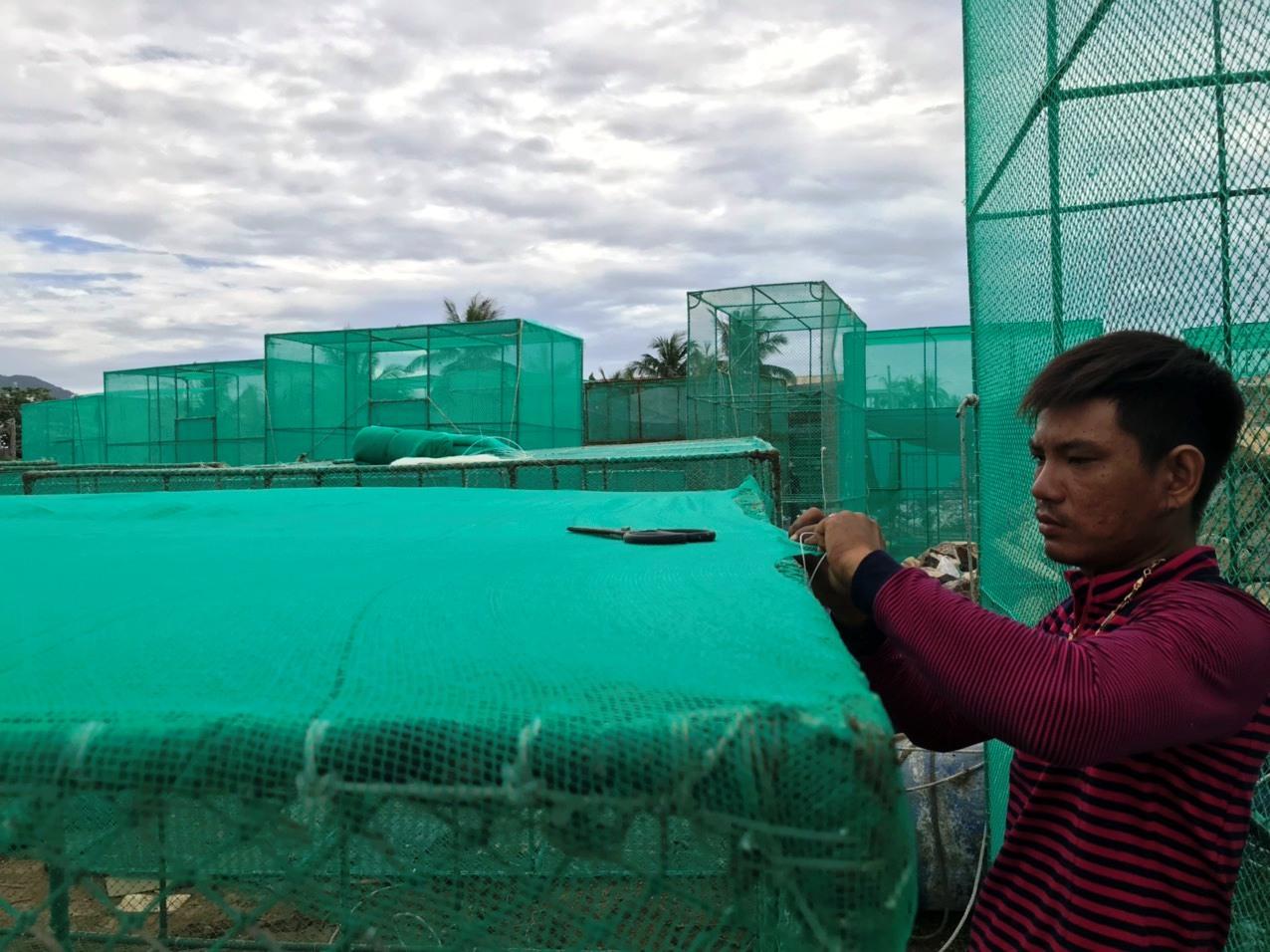 Khánh Hòa: Kiếm nửa triệu đồng/ngày nhờ nghề may lưới biển - Ảnh 2.