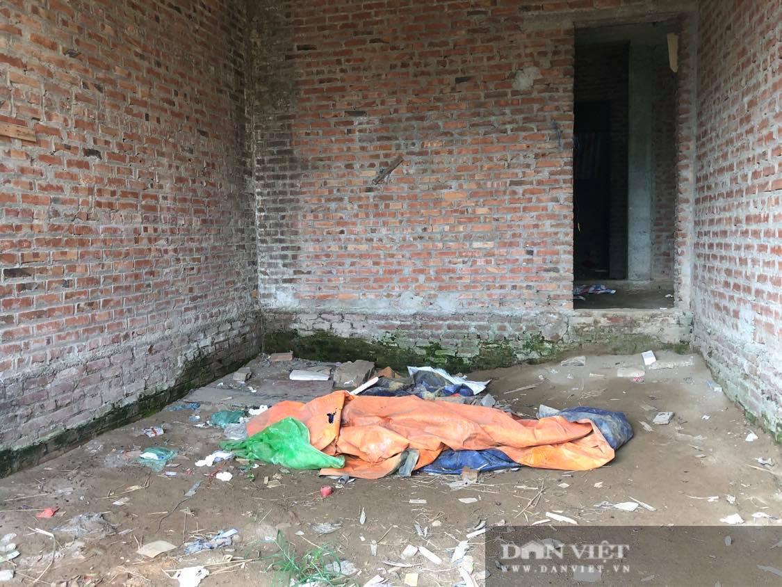 La liệt biệt thự chục tỷ đồng bỏ hoang ở Hà Nội - Ảnh 3.