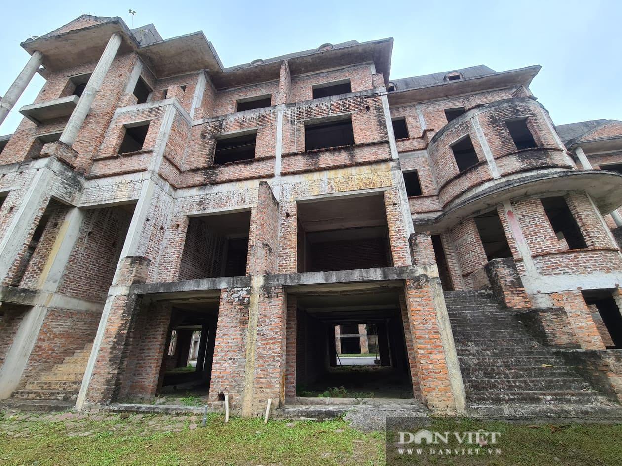 La liệt biệt thự chục tỷ đồng bỏ hoang ở Hà Nội - Ảnh 6.
