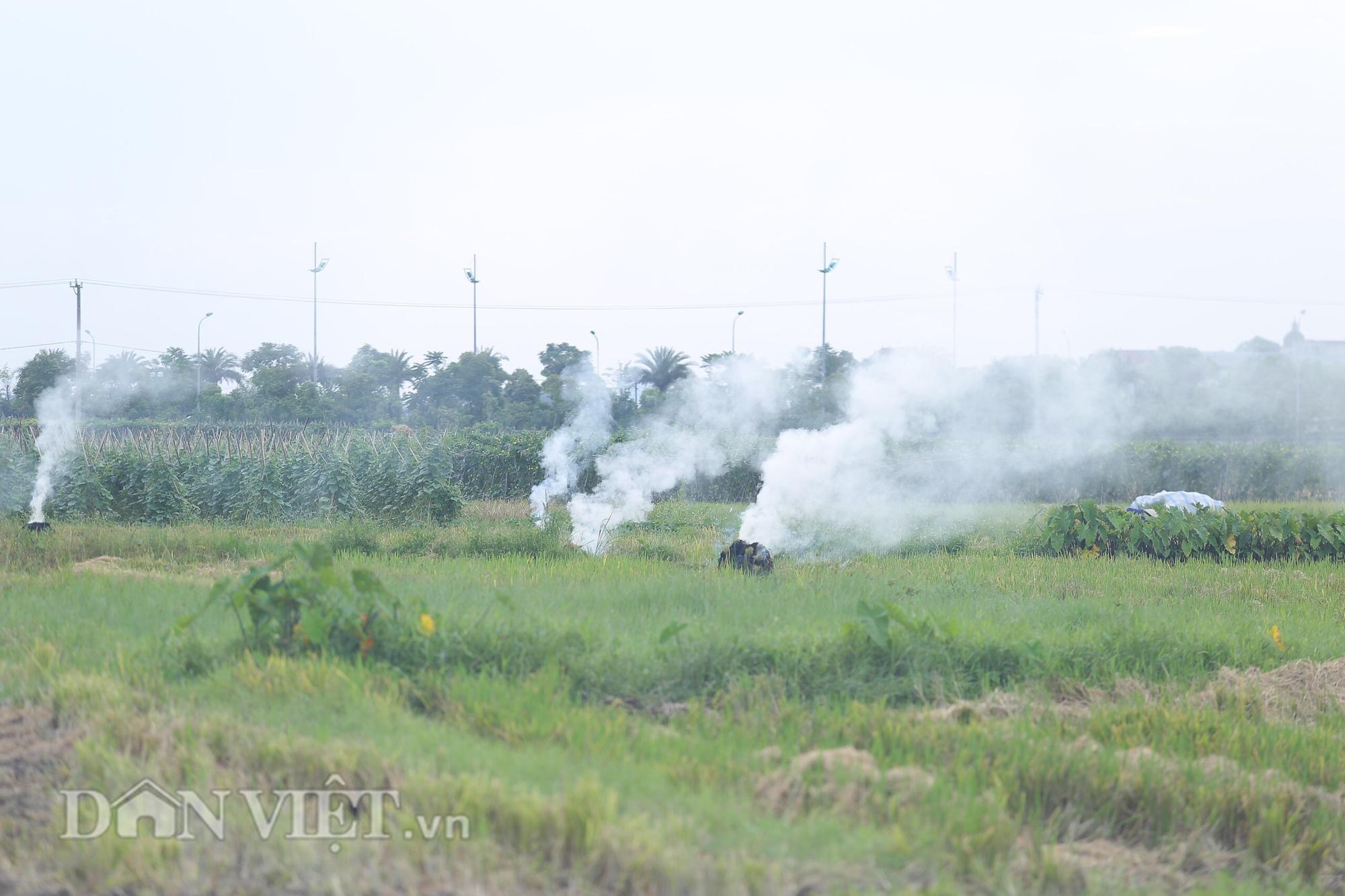 Vì sao tình trạng đốt rơm rạ vẫn liên tục tái diễn ở các vùng ngoại thành Hà Nội? - Ảnh 1.