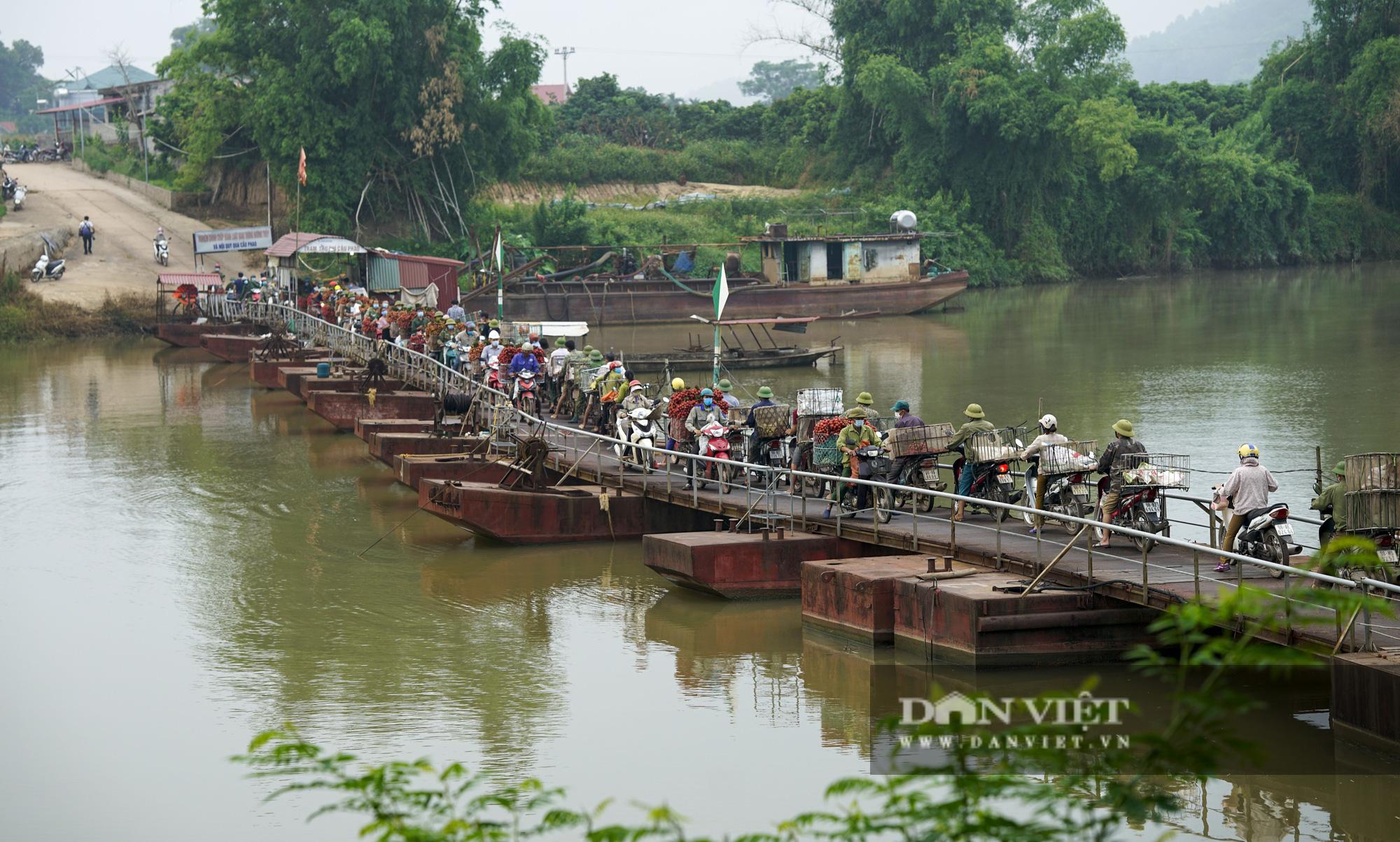 """Người dân """"vồ ếch"""", ngã xuống cầu khi chở vải đi qua cây cầu """"tử thần"""" ở Bắc Giang - Ảnh 1."""