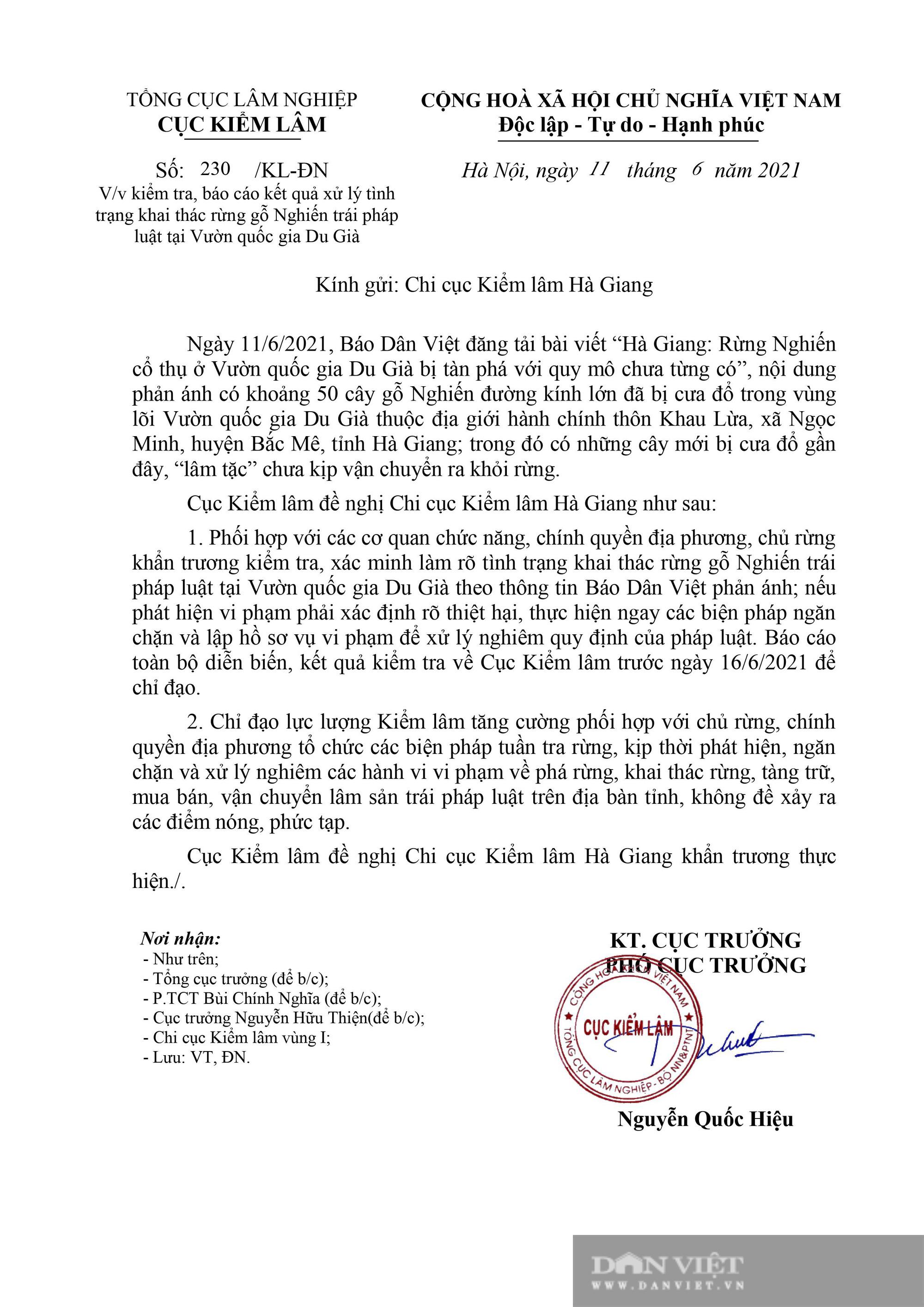 """Cục Kiểm lâm chỉ đạo """"nóng"""" vụ phá rừng quy mô lớn chưa từng có ở Hà Giang - Ảnh 2."""