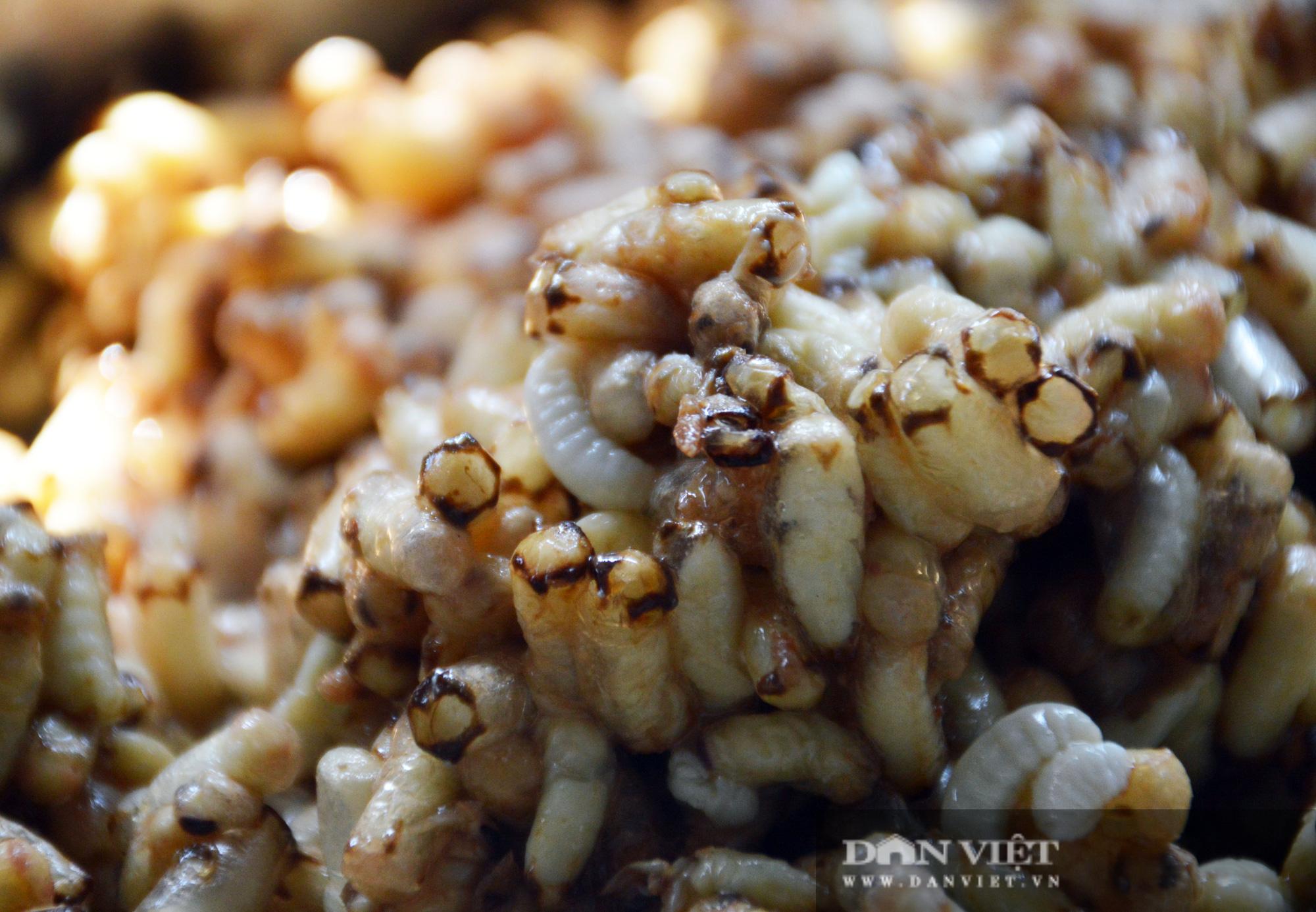 Điểm qua những món đặc sản từ nhộng ong, nhìn thì sợ nhưng ăn thì ghiền - Ảnh 7.