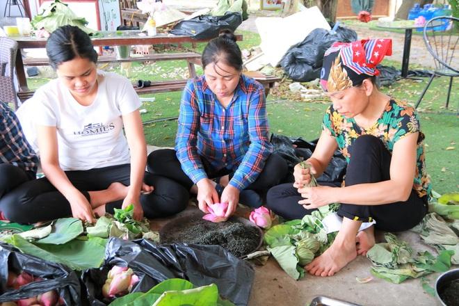 Ninh Bình: Nhân viên du lịch hái hoa sen, gặt lúa để có thêm thu nhập - Ảnh 1.