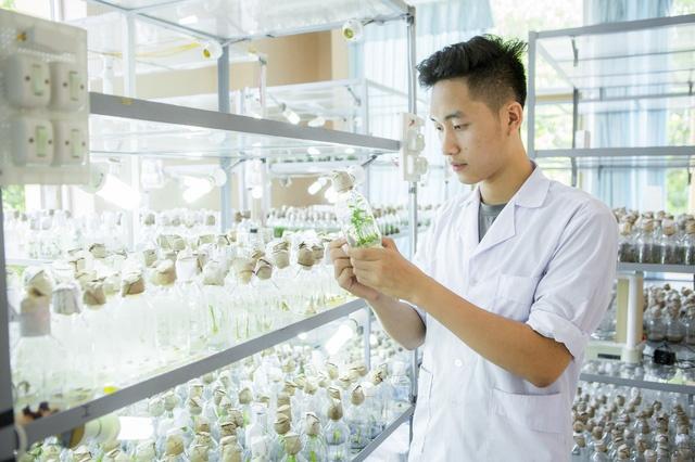"""Mỏi chân khám phá trường đại học nhiều cây xanh nhất Việt Nam, nhiều góc cực """"chill"""" - Ảnh 2."""