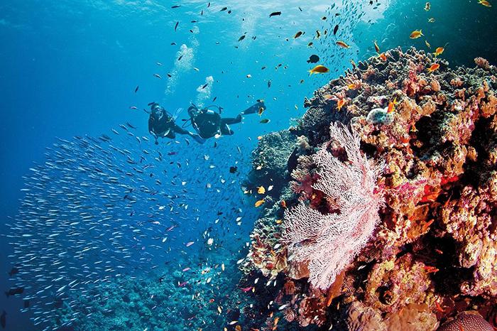 """""""Thiên đường biển"""" Great Barrier Reef trong nét văn hóa tâm linh của các chủ nhân truyền thống - Ảnh 11."""