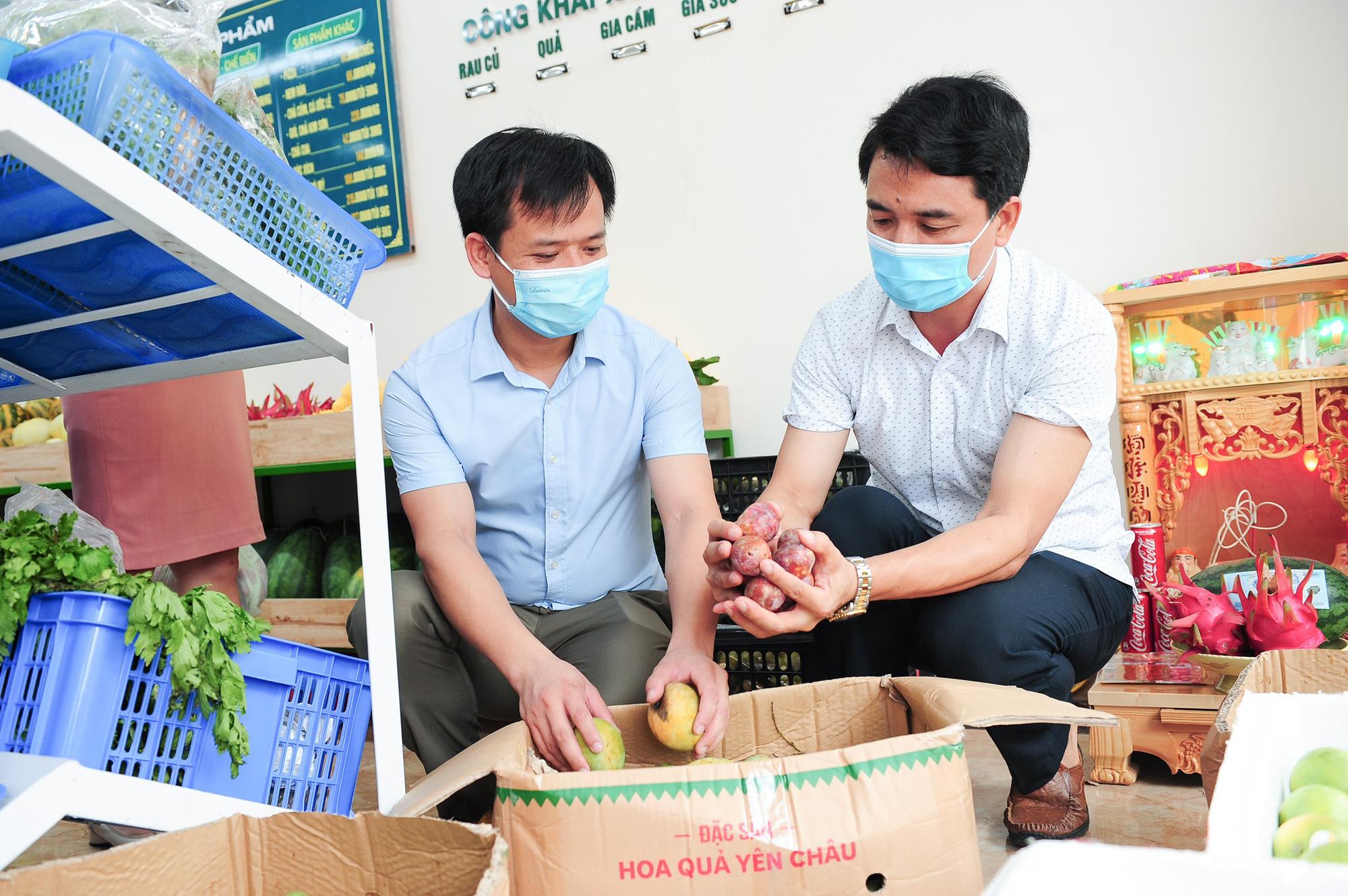 Ninh Bình: Hội Nông dân tỉnh kết nối tiêu thụ nông sản trong mùa dịch cho nông dân. - Ảnh 3.