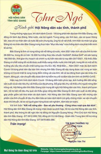 Báo NTNN/ Điện tử Dân Việt hỗ trợ tiêu thụ vải thiều Bắc Giang - Ảnh 3.
