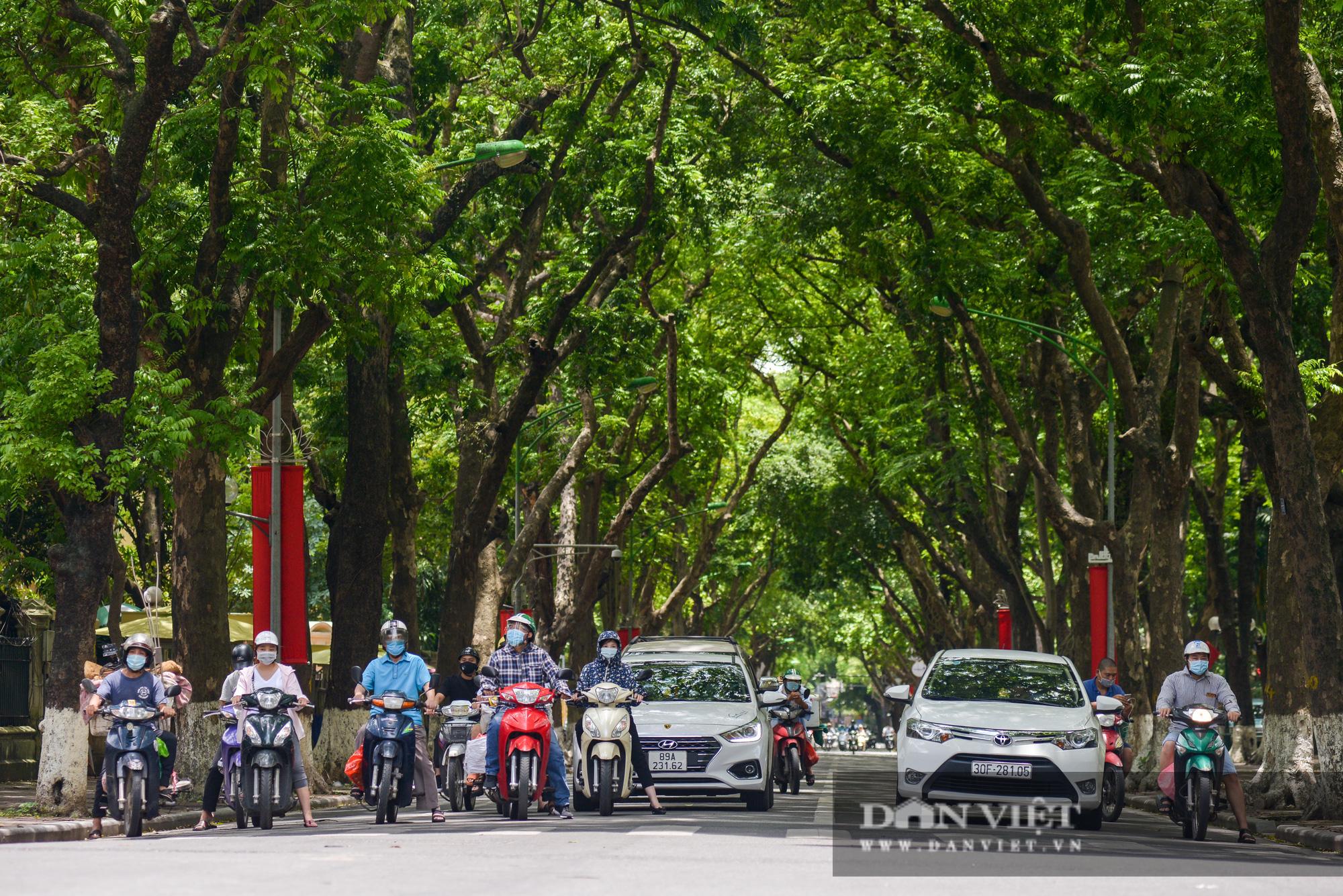 """Các tuyến đường Hà Nội hạ nhiệt trong ngày nóng nhờ """" dàn điều hòa xanh"""" - Ảnh 3."""
