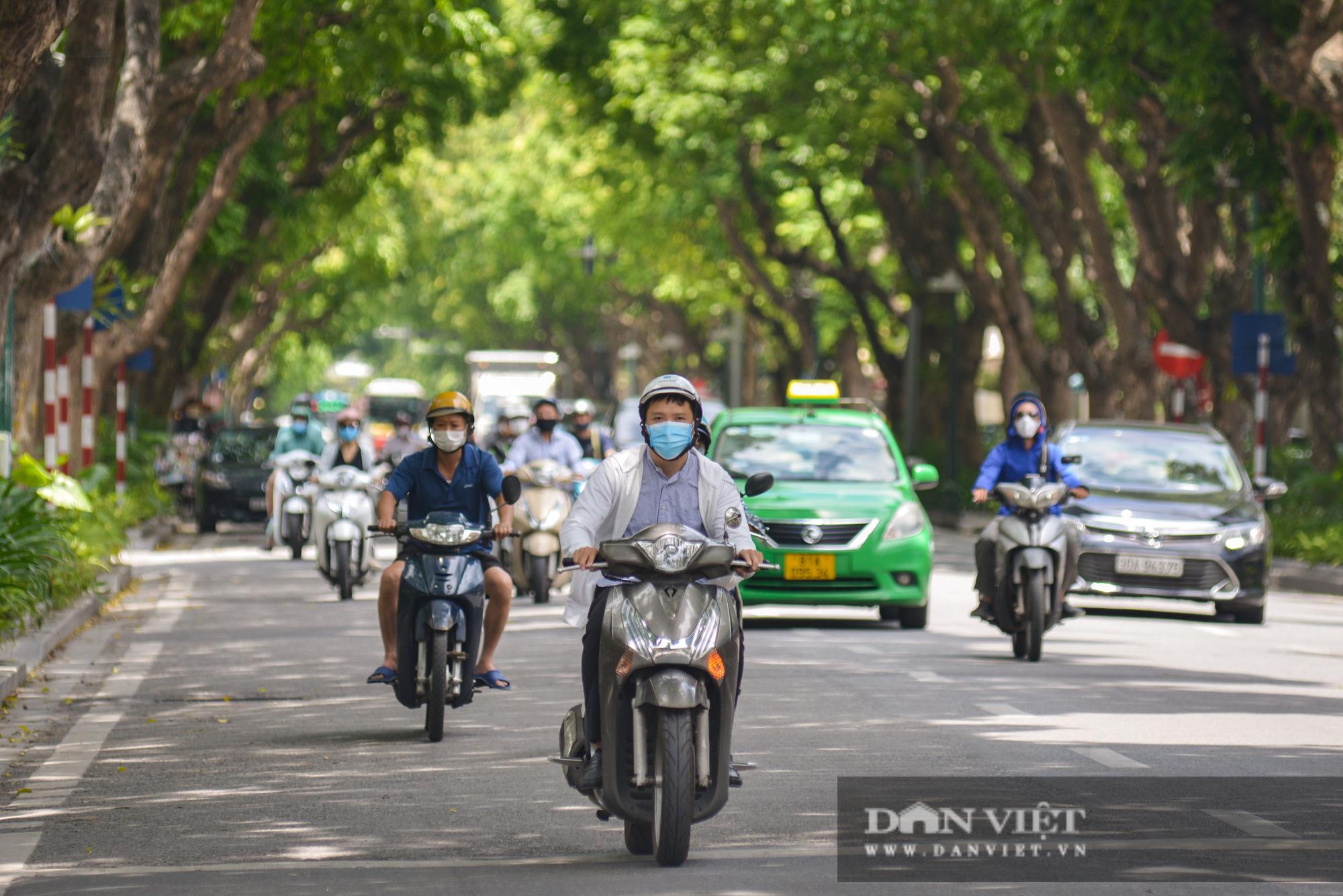 """Các tuyến đường Hà Nội hạ nhiệt trong ngày nóng nhờ """" dàn điều hòa xanh"""" - Ảnh 8."""