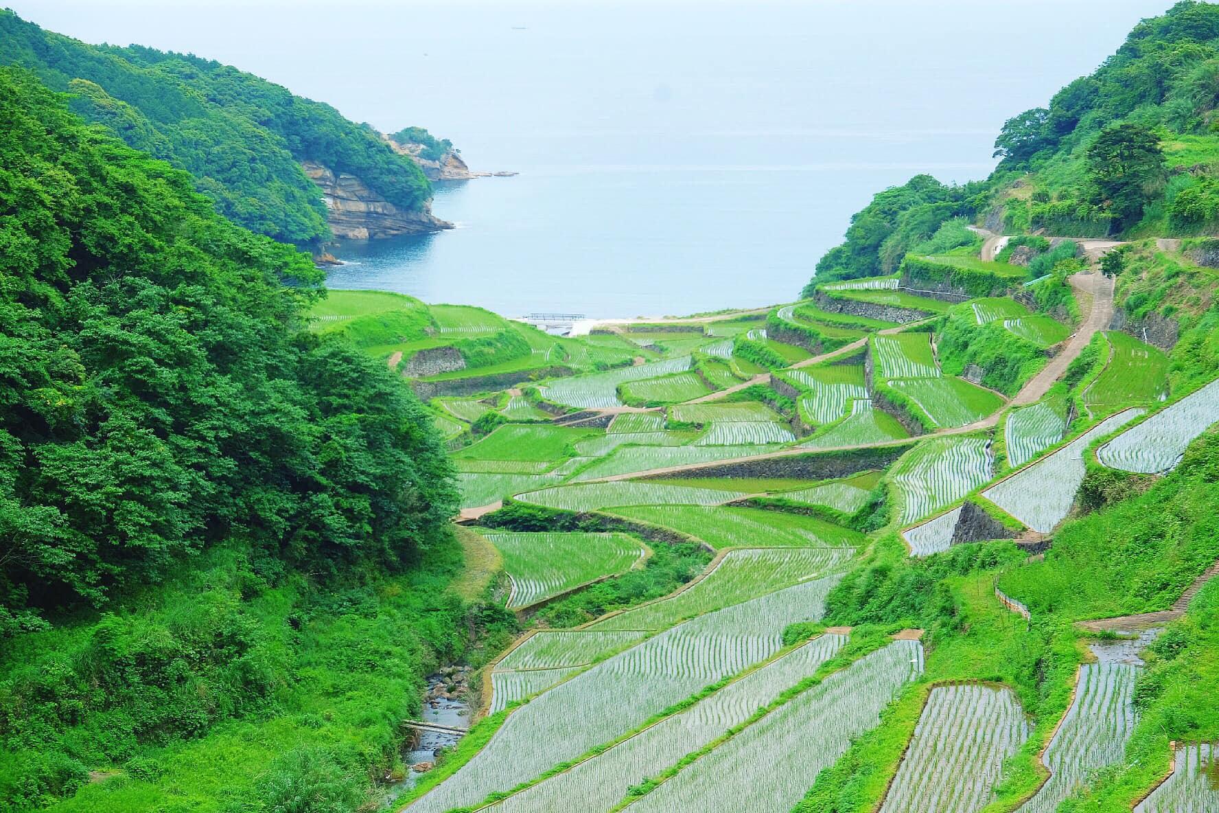 """Chàng trai Việt xin nghỉ việc, dành một tháng """"phượt"""" 10 tỉnh của Nhật Bản - Ảnh 4."""