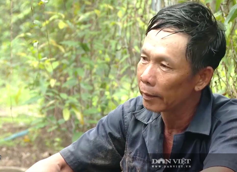 Bà Rịa – Vũng Tàu: Trồng loại khoai này một lần đào củ bán mãi, anh nông dân lời mỗi sào hơn 120 triệu đồng - Ảnh 3.