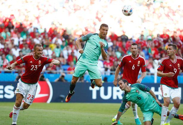 Xem trực tiếp Bồ Đào Nha vs Hungary trên VTV3 - Ảnh 1.