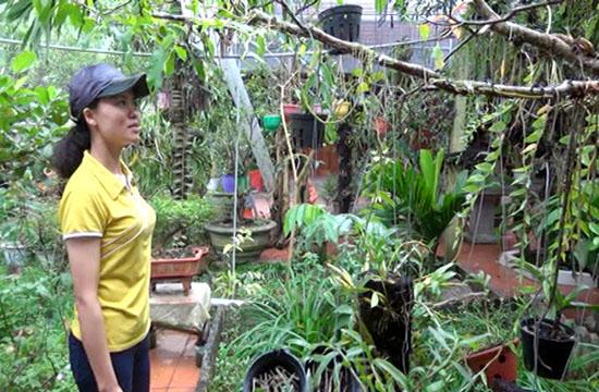 Thanh Hóa: Trồng hoa phong lan rừng, treo đầy nhà, sơn nữ còn mong muốn điều ai nghe cũng bất ngờ - Ảnh 5.