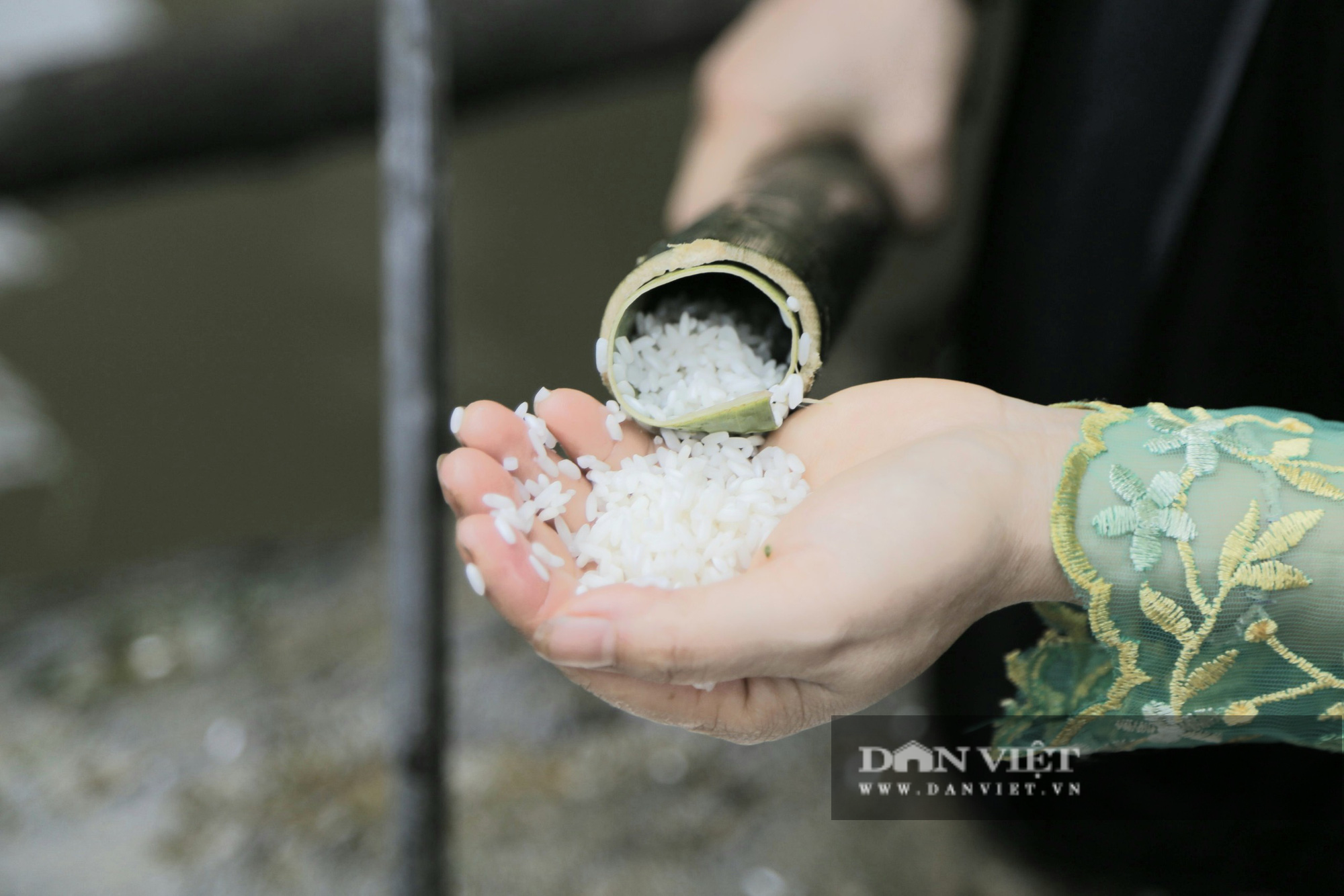 Đến Pù Luông thưởng thức món cơm lam truyền thống dân tộc Thái nơi đây - Ảnh 5.