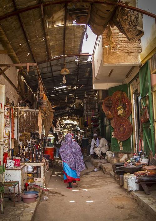 Những cư dân nổi tiếng bên bờ sông Nile Xanh của bộ tộc Mahas - Ảnh 3.