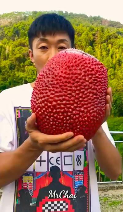 Thanh niên Trung Quốc khoe giống mít vỏ đỏ khiến dân mạng sửng sốt, ở Việt Nam cũng từng xuất hiện loại mít này nhưng thực hư thế nào? - Ảnh 1.